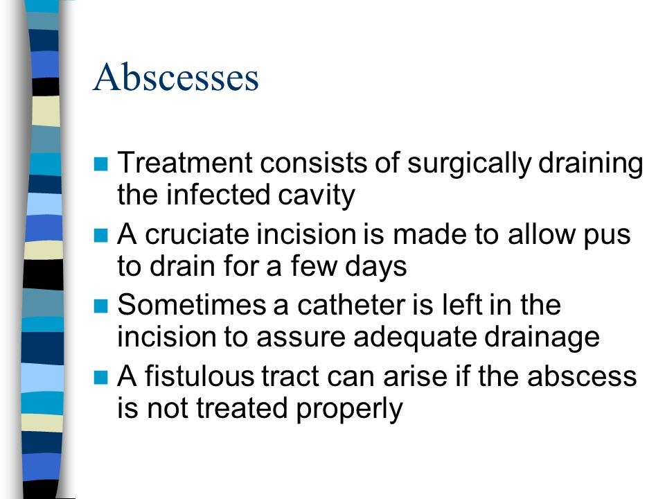 Abscesses Treatment consists of surgically draining the infected cavity A cruciate incision is made to allow pus to drain for a few days Sometimes a c