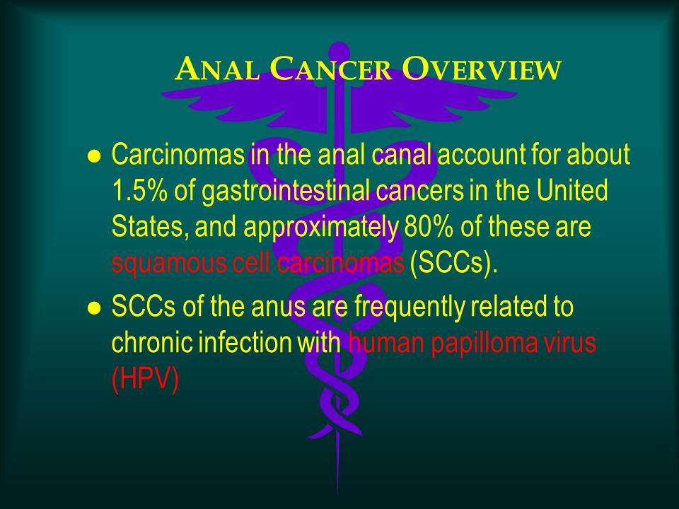 A NAL C ANCER O VERVIEW l Carcinomas in the anal canal account for about 1.5% of gastrointestinal cancers in the United States, and approximately 80%
