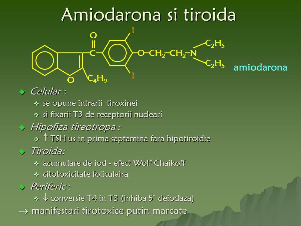 O C O C4H9C4H9 OCH 2 N C2H5C2H5 C2H5C2H5 I I amiodarona Amiodarona si tiroida  Celular :  se opune intrarii tiroxinei  si fixarii T3 de receptorii nucleari  Hipofiza tireotropa :   TSH us in prima saptamina fara hipotiroidie  Tiroida:  acumulare de iod - efect Wolf Chaikoff  citotoxicitate foliculaira  Periferic :   conversie T4 in T3 (inhiba 5' deiodaza)  manifestari tirotoxice putin marcate