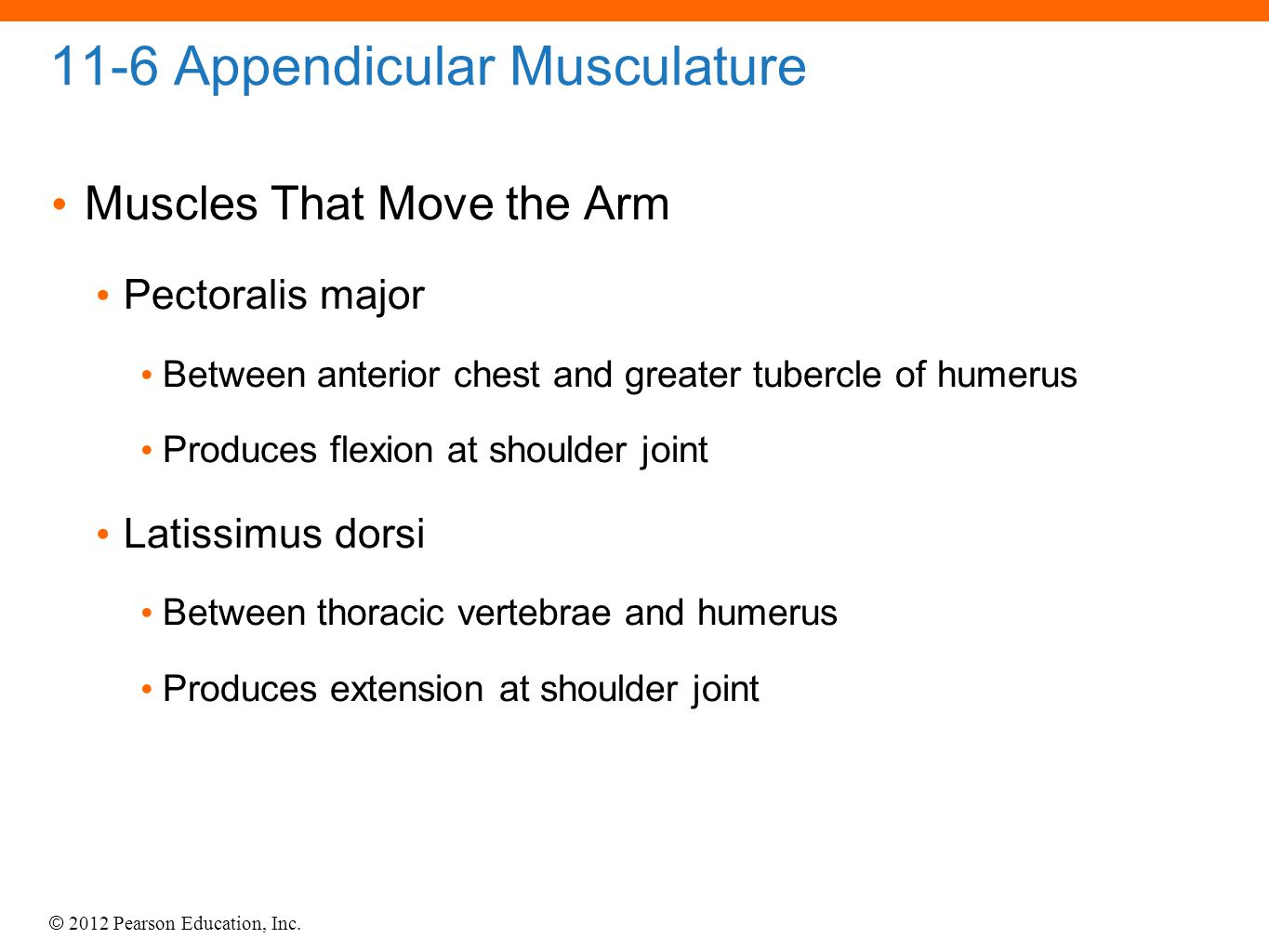 © 2012 Pearson Education, Inc. 11-6 Appendicular Musculature Muscles That Move the Arm Pectoralis major Between anterior chest and greater tubercle of