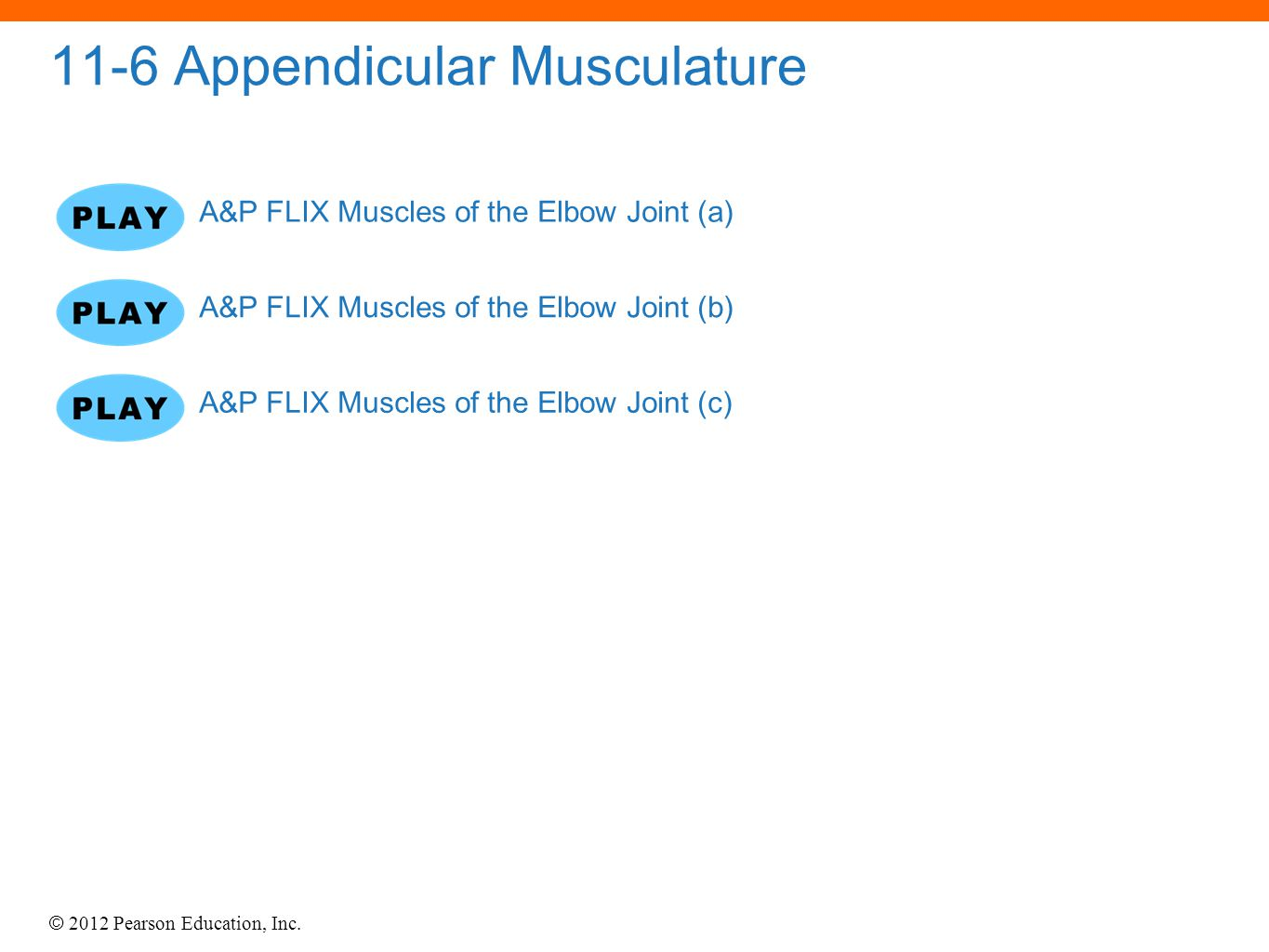 © 2012 Pearson Education, Inc. 11-6 Appendicular Musculature A&P FLIX Muscles of the Elbow Joint (a) A&P FLIX Muscles of the Elbow Joint (b) A&P FLIX
