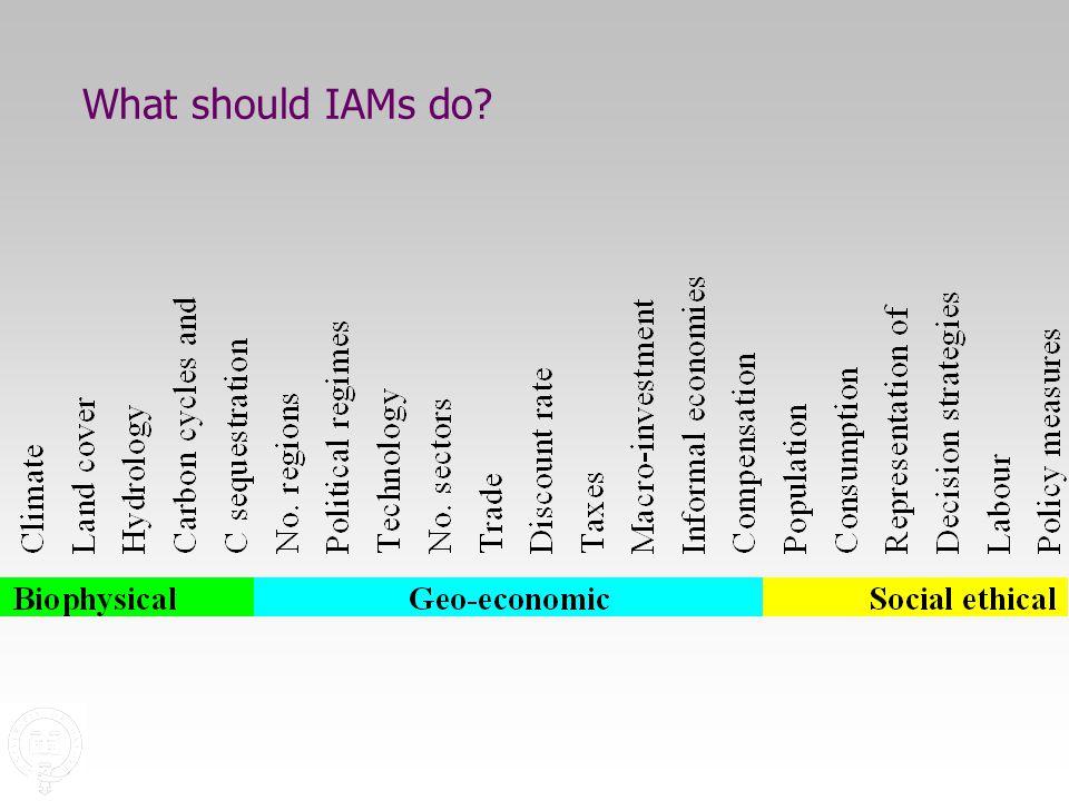 What should IAMs do
