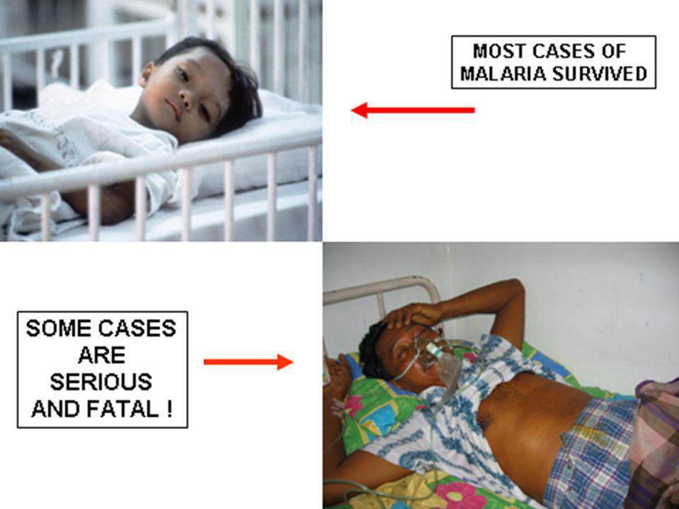 SIGN AND SYMPTOMS OF PARASITIC DISEASE  PRURITUS ANI  GROUND ITCH  SWIMMER'S ITCH  CREEPING ERUPTION CUTANEUS SYMPTOMS  MALARIA  VISCERAL LARVA