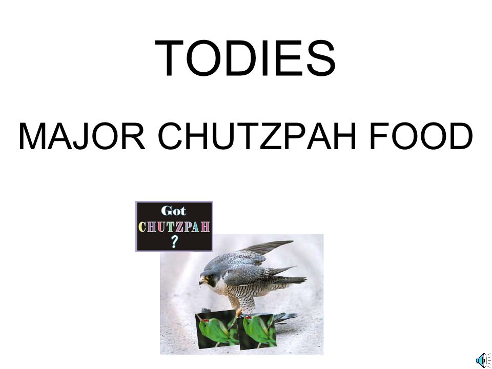 TODIES MAJOR CHUTZPAH FOOD