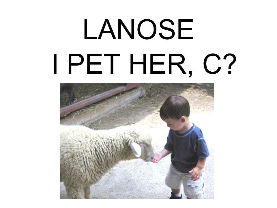 LANOSE I PET HER, C?