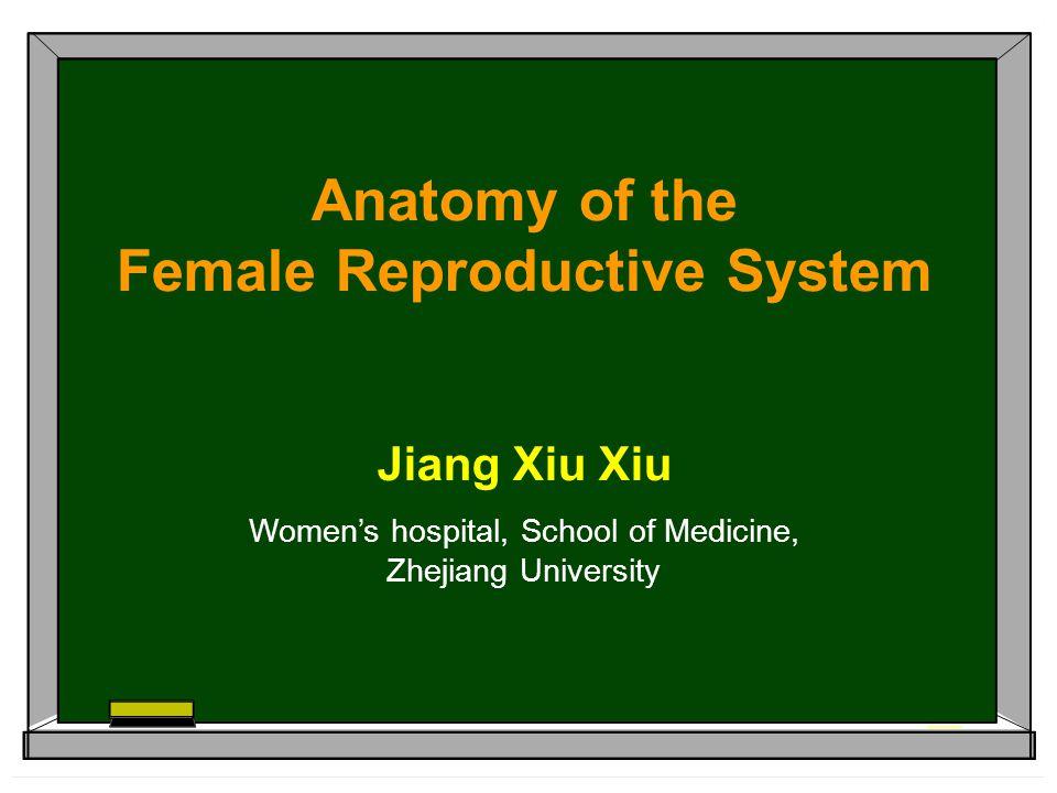 Anatomy of the Female Reproductive System Jiang Xiu Xiu Women's hospital, School of Medicine, Zhejiang University