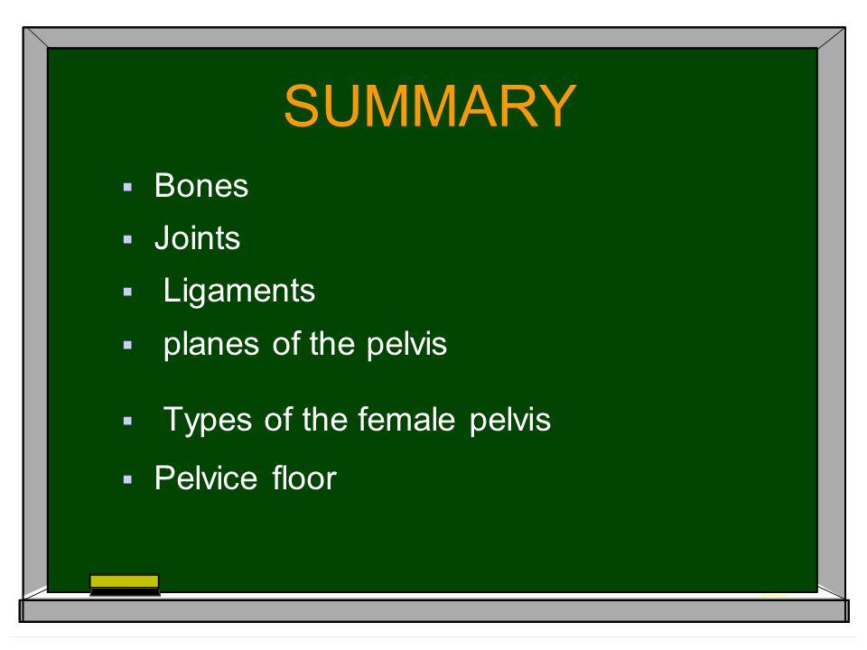 SUMMARY  Bones  Joints  Ligaments  planes of the pelvis  Types of the female pelvis  Pelvice floor