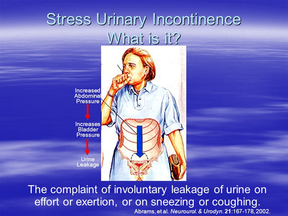Stress Urinary Incontinence What is it.