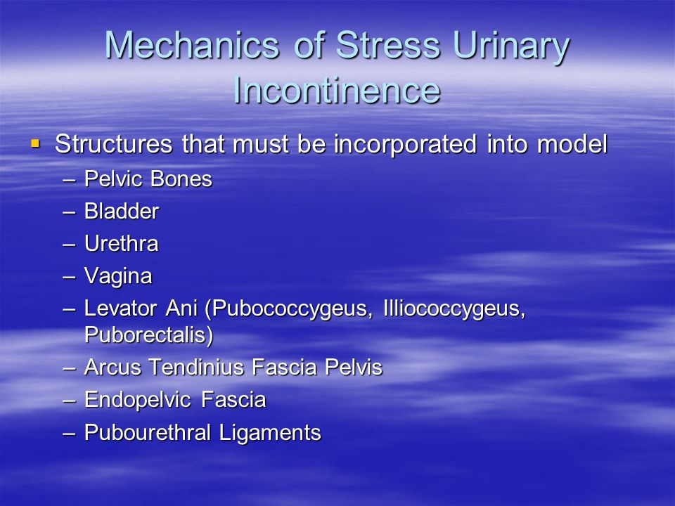 Mechanics of Stress Urinary Incontinence  Structures that must be incorporated into model –Pelvic Bones –Bladder –Urethra –Vagina –Levator Ani (Pubococcygeus, Illiococcygeus, Puborectalis) –Arcus Tendinius Fascia Pelvis –Endopelvic Fascia –Pubourethral Ligaments