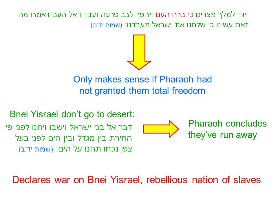 Only makes sense if Pharaoh had not granted them total freedom Bnei Yisrael don't go to desert: Pharaoh concludes they've run away Declares war on Bne