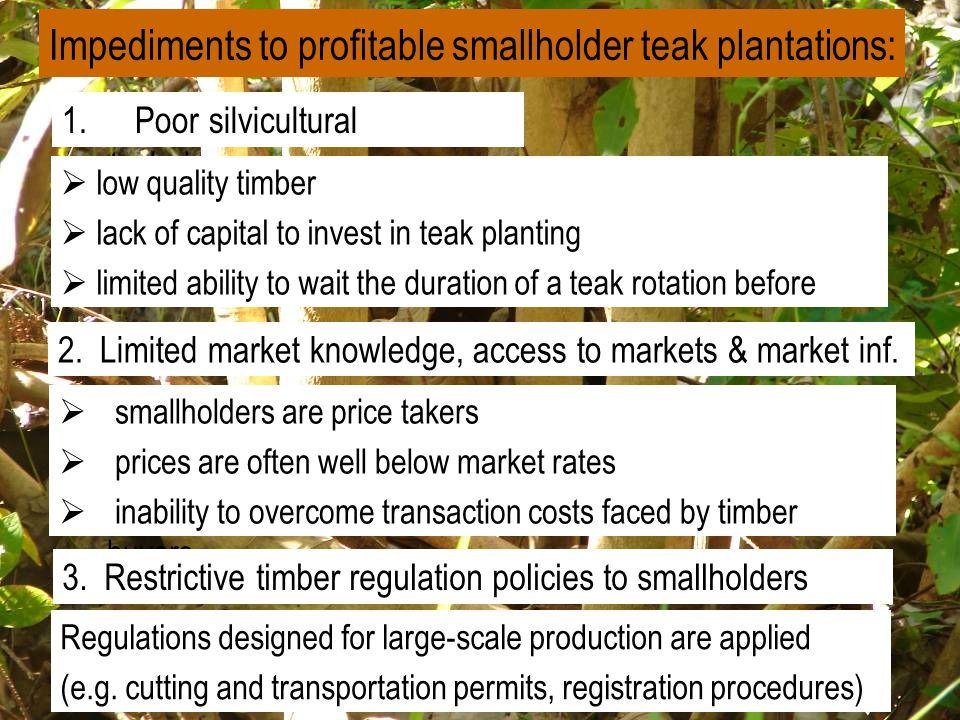Impediments to profitable smallholder teak plantations: 1.