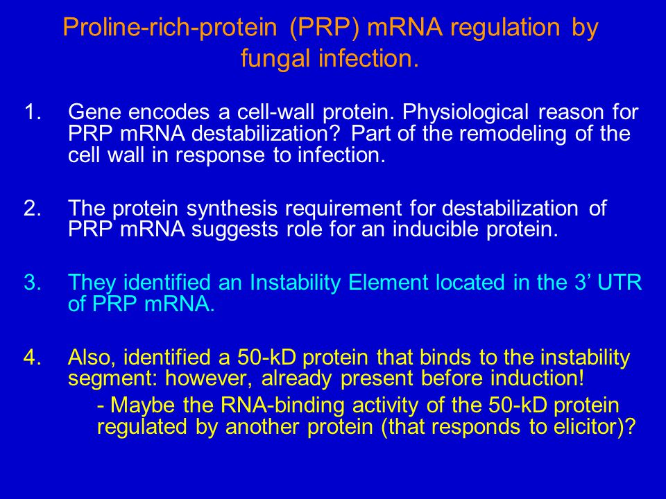 Proline-rich-protein (PRP) mRNA regulation by fungal infection. 1.Gene encodes a cell-wall protein. Physiological reason for PRP mRNA destabilization?