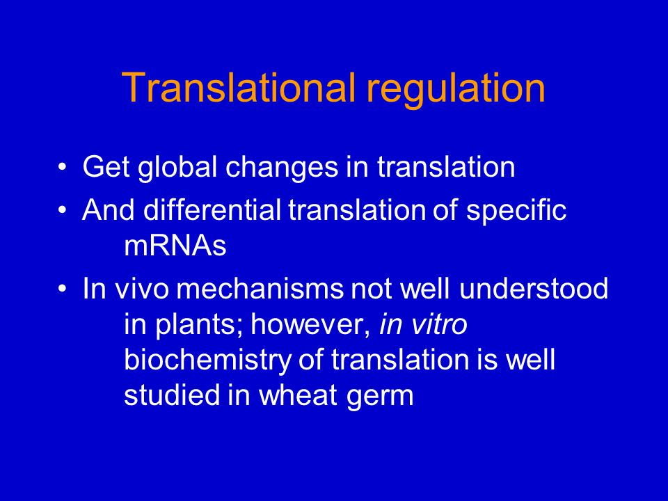 Translational regulation Get global changes in translation And differential translation of specific mRNAs In vivo mechanisms not well understood in pl
