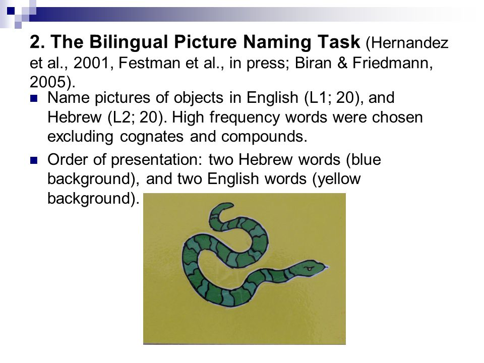 2. The Bilingual Picture Naming Task (Hernandez et al., 2001, Festman et al., in press; Biran & Friedmann, 2005). Name pictures of objects in English