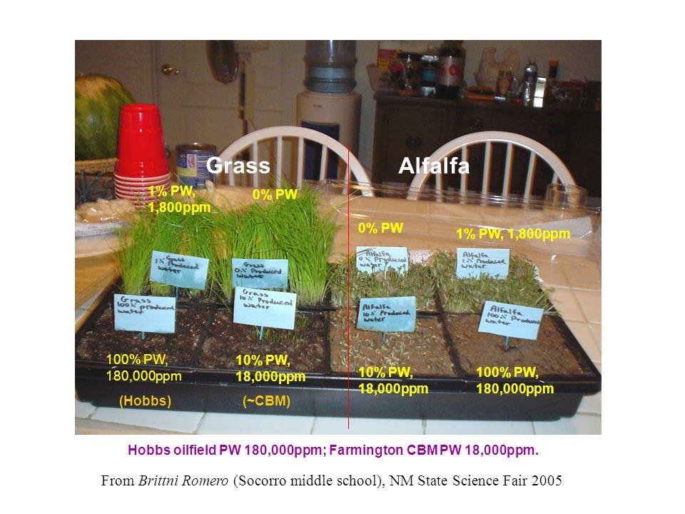 1% PW, 1,800ppm 100% PW, 180,000ppm 10% PW, 18,000ppm 0% PW 1% PW, 1,800ppm 100% PW, 180,000ppm 10% PW, 18,000ppm Grass Alfalfa From Brittni Romero (Socorro middle school), NM State Science Fair 2005 Hobbs oilfield PW 180,000ppm; Farmington CBM PW 18,000ppm.