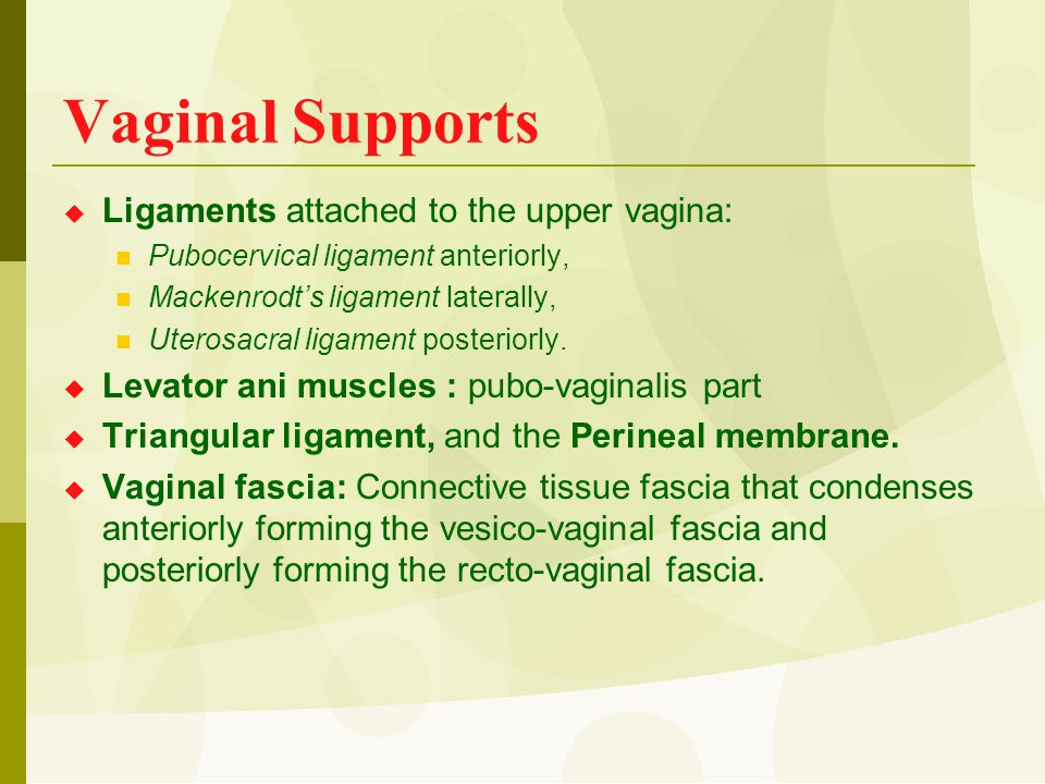 Vaginal Supports  Ligaments attached to the upper vagina: Pubocervical ligament anteriorly, Mackenrodt's ligament laterally, Uterosacral ligament pos