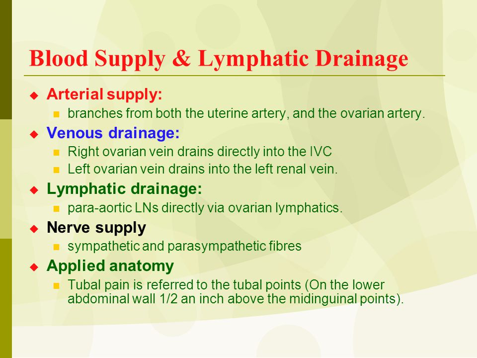 Blood Supply & Lymphatic Drainage  Arterial supply: branches from both the uterine artery, and the ovarian artery.  Venous drainage: Right ovarian v