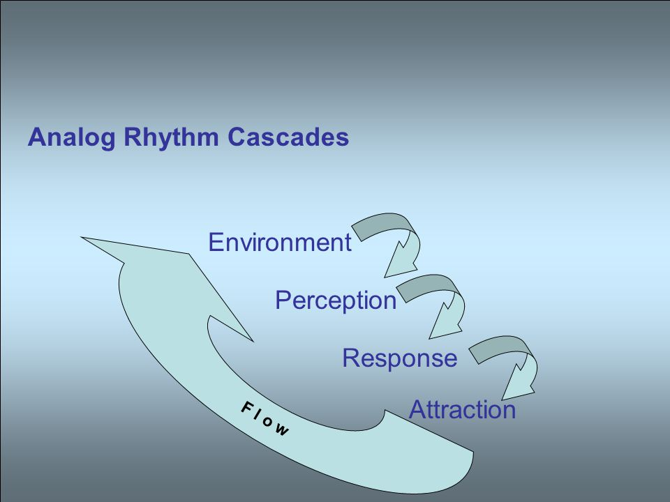 Analog Rhythm Cascades Environment Perception Response Attraction F l o w