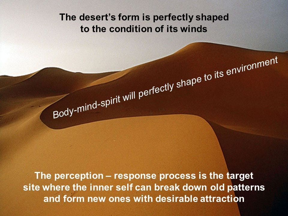 Body-mind-spirit will perfectly shape to its environment The desert's form is perfectly shaped to the condition of its winds The perception – response process is the target site where the inner self can break down old patterns and form new ones with desirable attraction