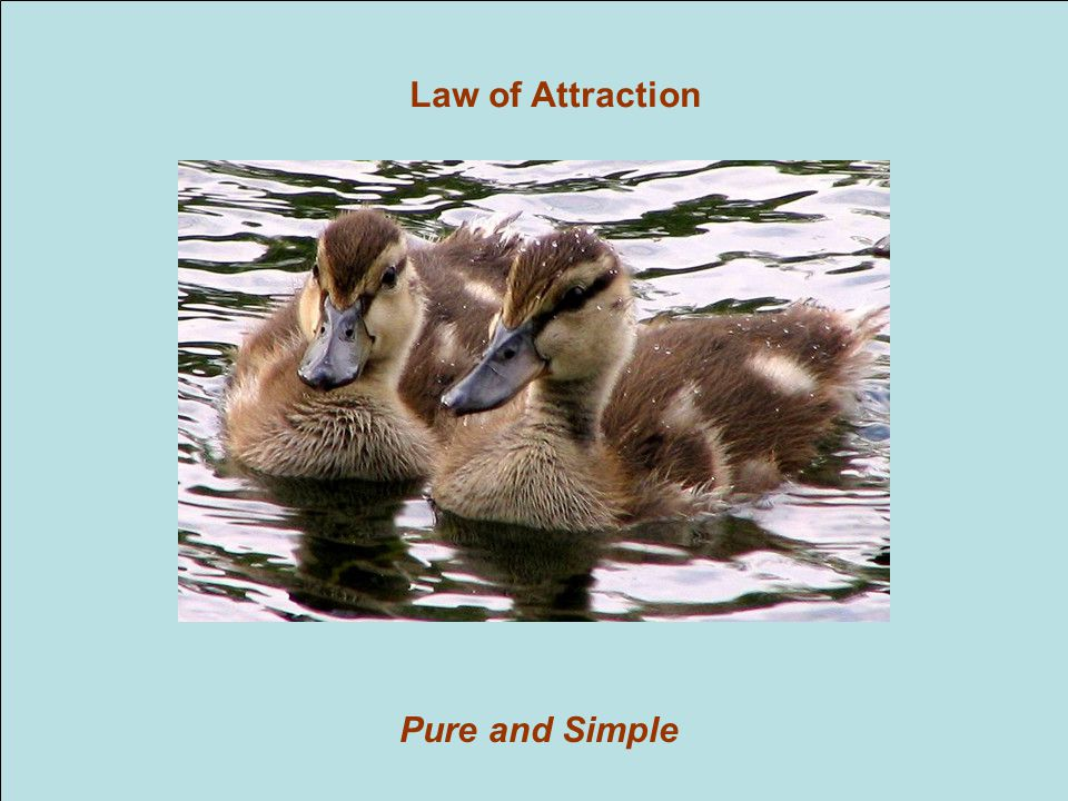 Pure and Simple Law of Attraction