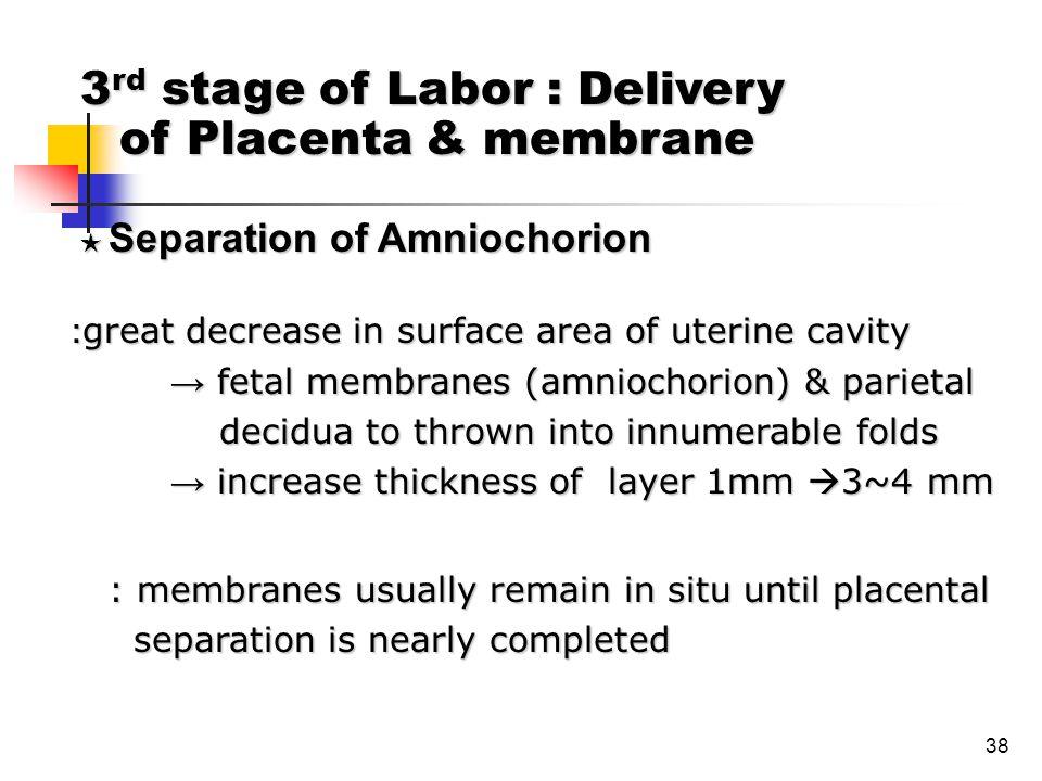 38 : great decrease in surface area of uterine cavity → fetal membranes (amniochorion) & parietal → fetal membranes (amniochorion) & parietal decidua