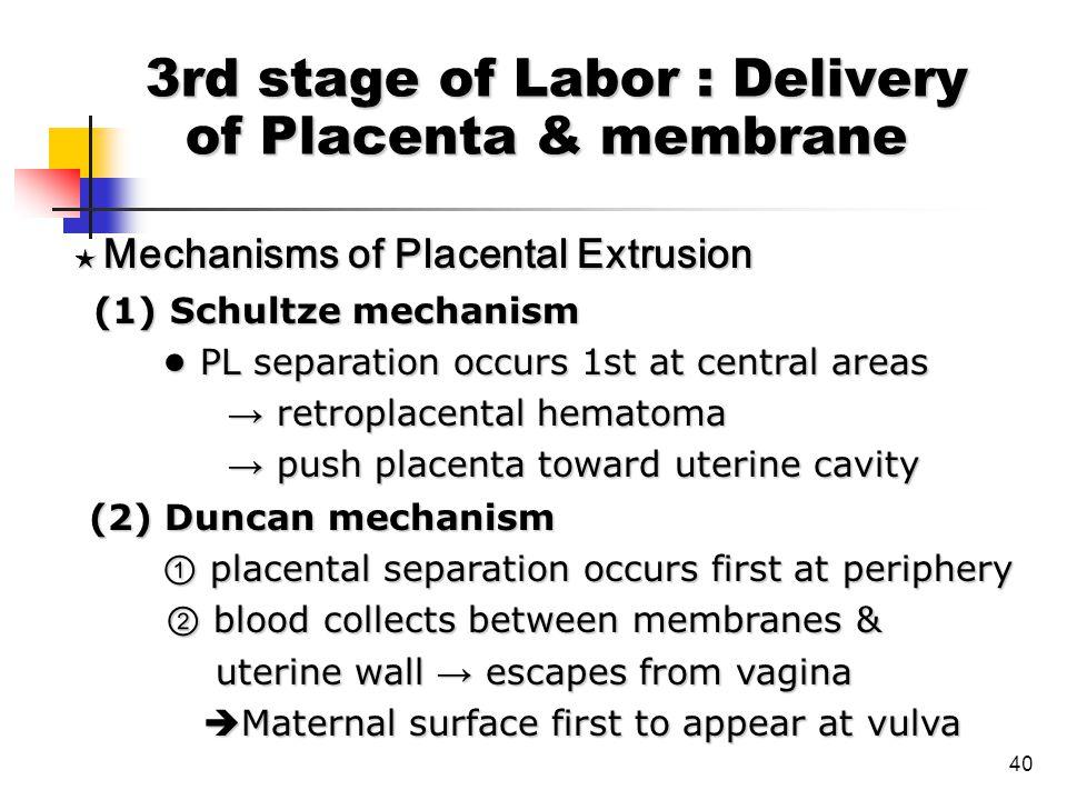 40 ★ Mechanisms of Placental Extrusion ★ Mechanisms of Placental Extrusion (1) Schultze mechanism (1) Schultze mechanism PL separation occurs 1st at c