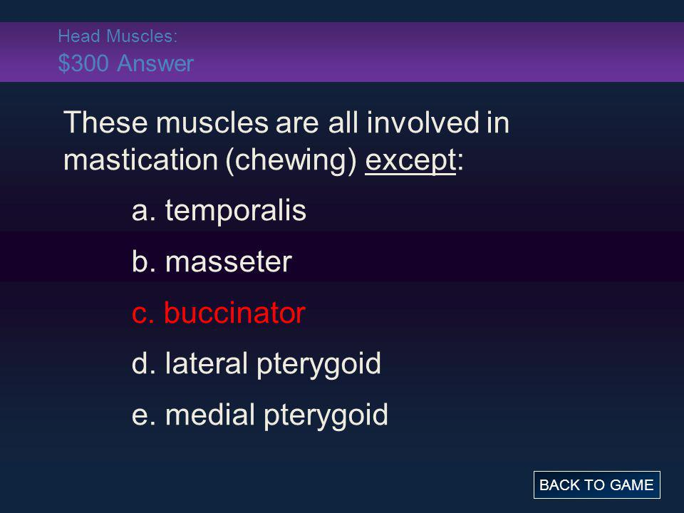 Head Muscles: $300 Answer These muscles are all involved in mastication (chewing) except: a. temporalis b. masseter c. buccinator d. lateral pterygoid