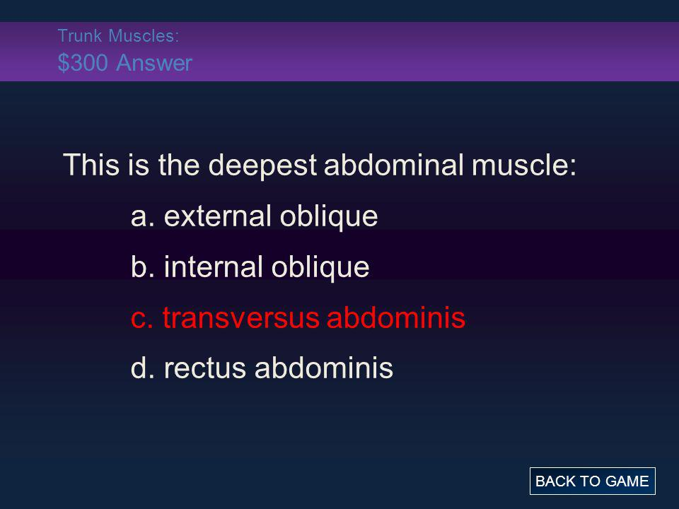 Trunk Muscles: $300 Answer This is the deepest abdominal muscle: a. external oblique b. internal oblique c. transversus abdominis d. rectus abdominis