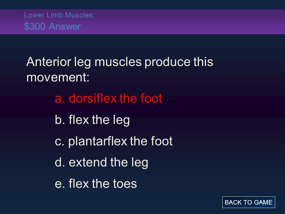 Lower Limb Muscles: $300 Answer Anterior leg muscles produce this movement: a. dorsiflex the foot b. flex the leg c. plantarflex the foot d. extend th