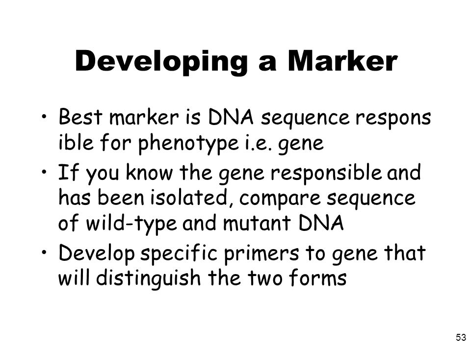 53 Developing a Marker Best marker is DNA sequence respons ible for phenotype i.e. gene If you know the gene responsible and has been isolated, compar