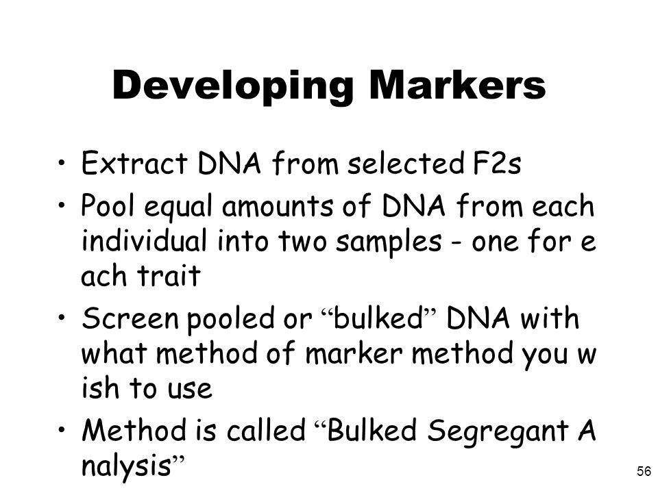 56 Developing Markers Extract DNA from selected F2s Pool equal amounts of DNA from each individual into two samples - one for e ach trait Screen poole