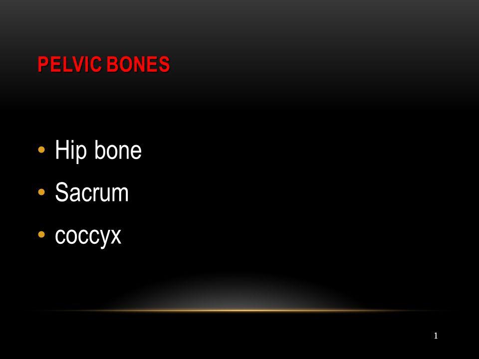 1 PELVIC BONES PELVIC BONES Hip bone Sacrum coccyx