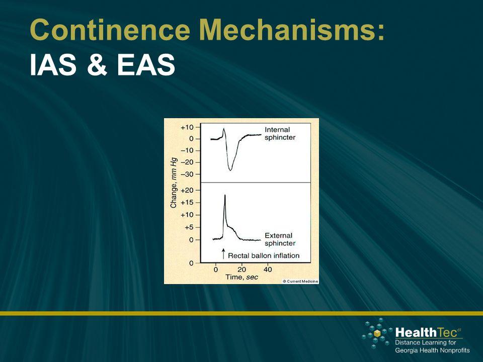 Continence Mechanisms: IAS & EAS