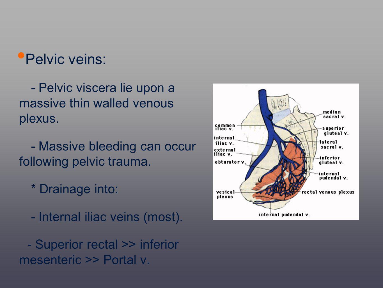 Pelvic veins: - Pelvic viscera lie upon a massive thin walled venous plexus. - Massive bleeding can occur following pelvic trauma. * Drainage into: -