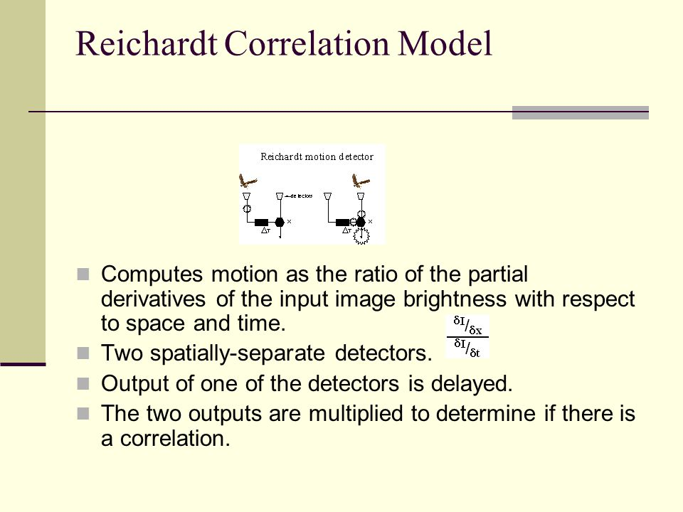 Reichardt Correlation Model Computes motion as the ratio of the partial derivatives of the input image brightness with respect to space and time. Two