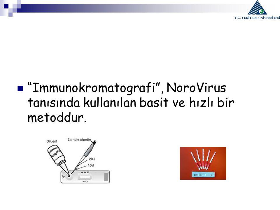 Immunokromatografi , NoroVirus tanısında kullanılan basit ve hızlı bir metoddur.
