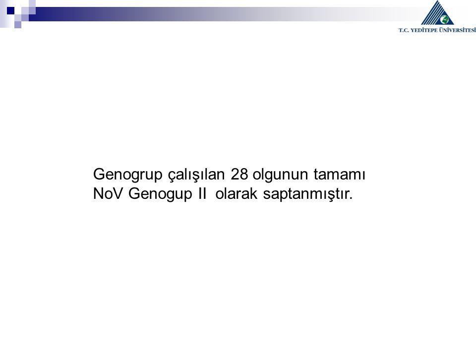 Genogrup çalışılan 28 olgunun tamamı NoV Genogup II olarak saptanmıştır.
