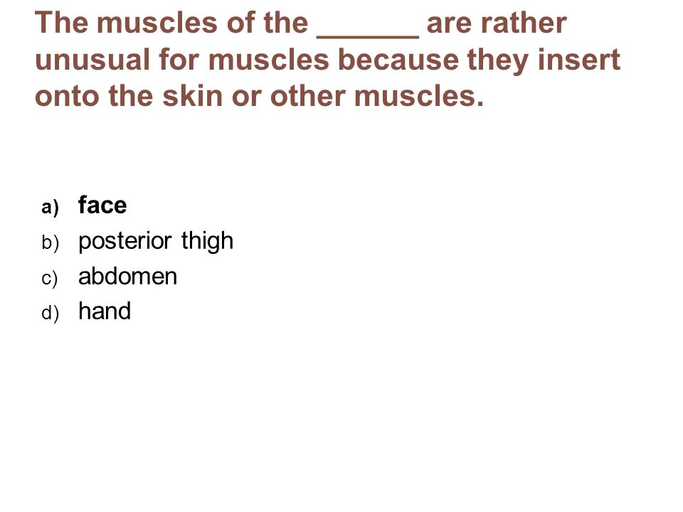 The muscles of the ______ are rather unusual for muscles because they insert onto the skin or other muscles. a) face b) posterior thigh c) abdomen d)