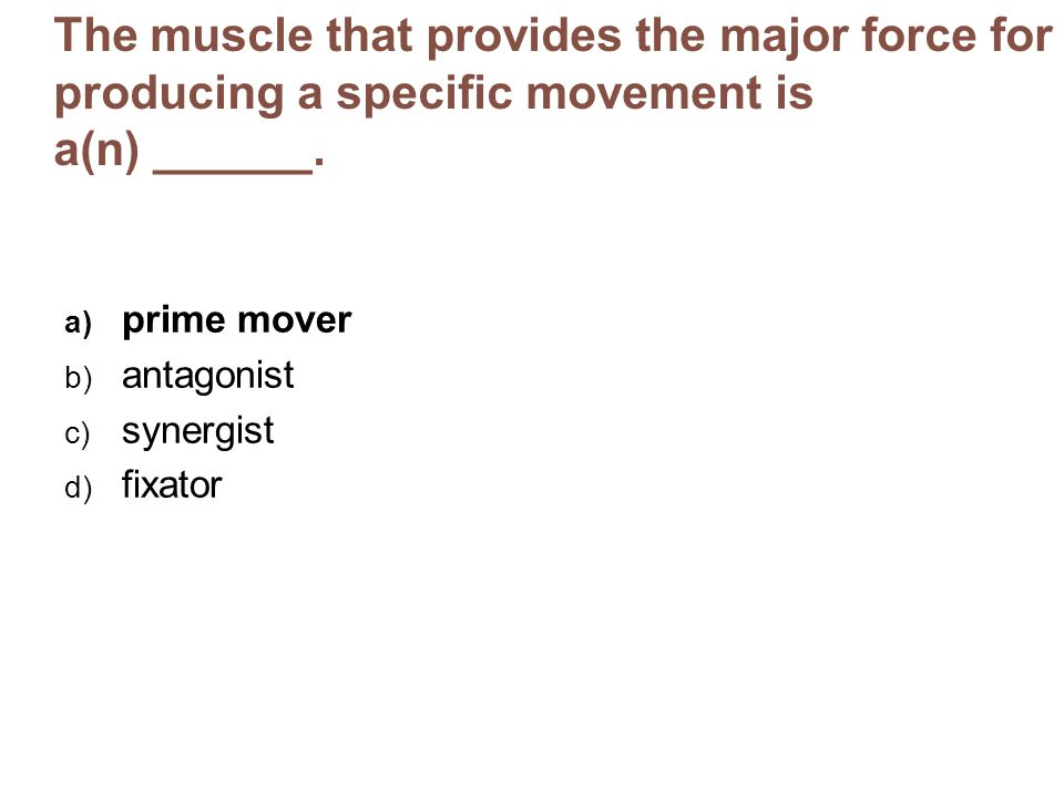 The muscle that provides the major force for producing a specific movement is a(n) ______. a) prime mover b) antagonist c) synergist d) fixator