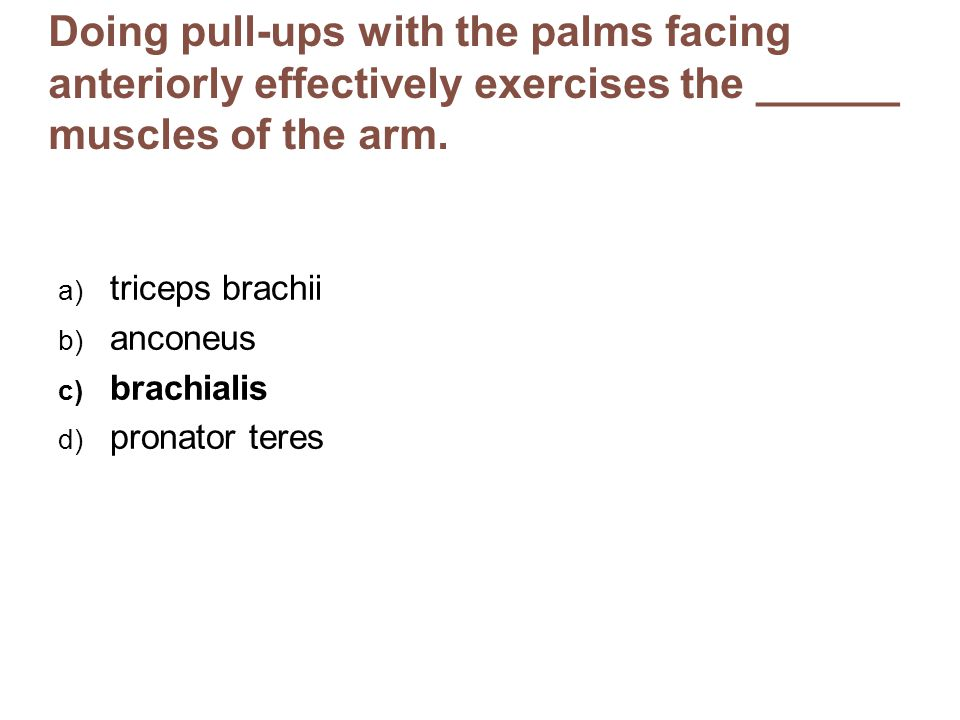 Doing pull-ups with the palms facing anteriorly effectively exercises the ______ muscles of the arm. a) triceps brachii b) anconeus c) brachialis d) p