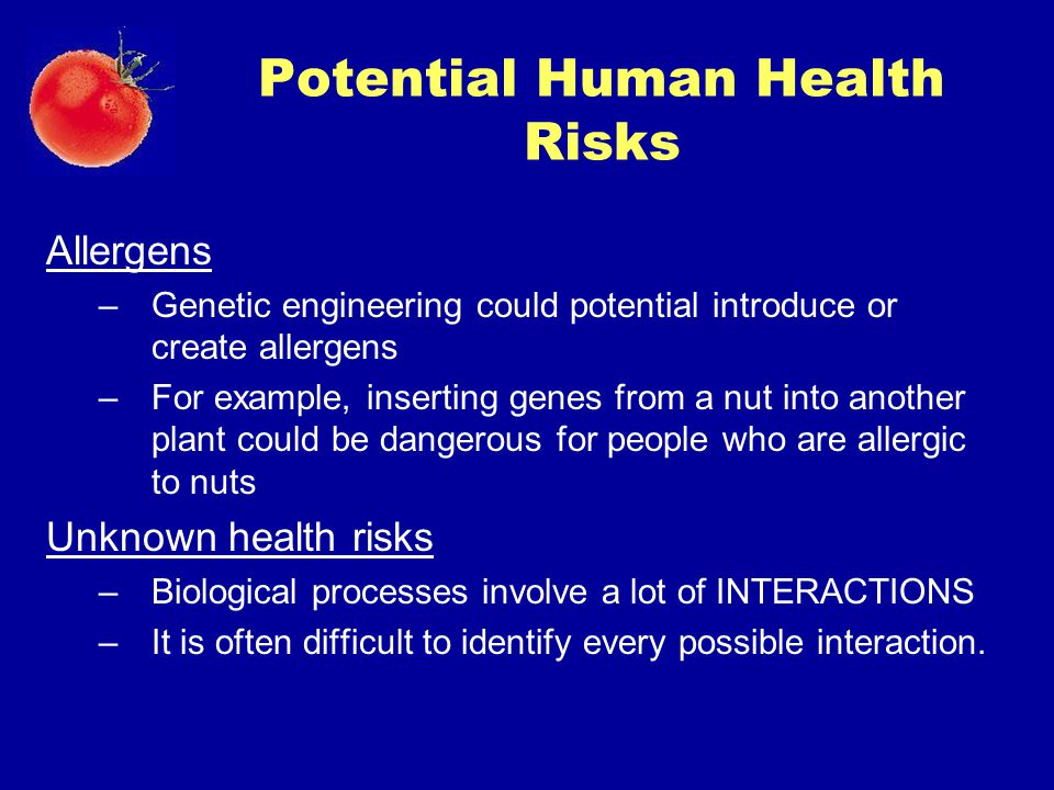 Potential Human Health Risks Allergens –Genetic engineering could potential introduce or create allergens –For example, inserting genes from a nut int