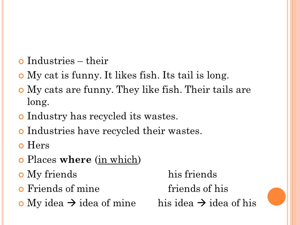 Industries – their My cat is funny. It likes fish.