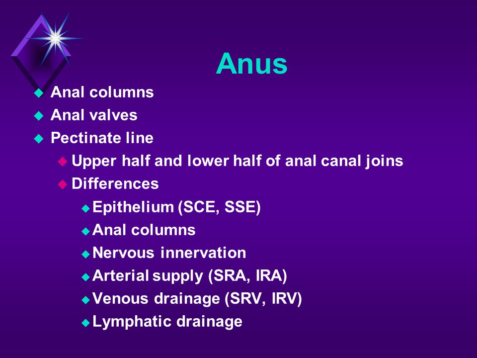 Anus  Anal columns  Anal valves  Pectinate line  Upper half and lower half of anal canal joins  Differences  Epithelium (SCE, SSE)  Anal column