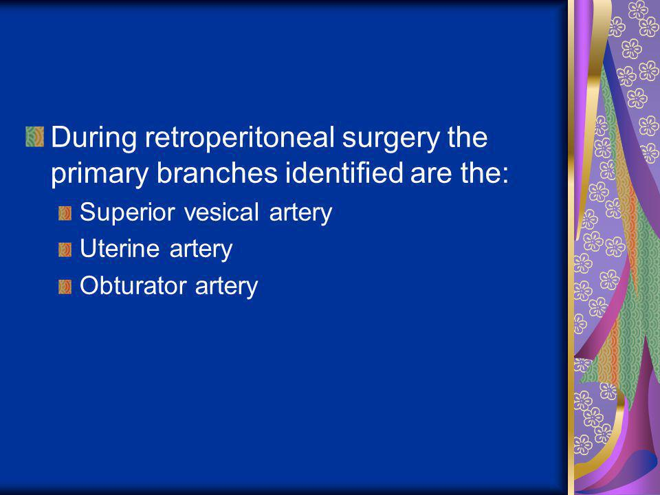 During retroperitoneal surgery the primary branches identified are the: Superior vesical artery Uterine artery Obturator artery