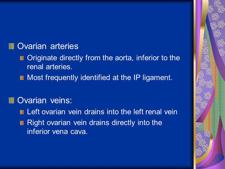 Ovarian arteries Originate directly from the aorta, inferior to the renal arteries. Most frequently identified at the IP ligament. Ovarian veins: Left