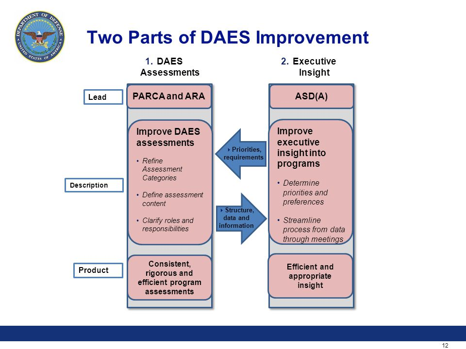 12 Two Parts of DAES Improvement 1.DAES Assessments 2.Executive Insight  Insight* Lead Description Product PARCA and ARA Improve DAES assessments Ref