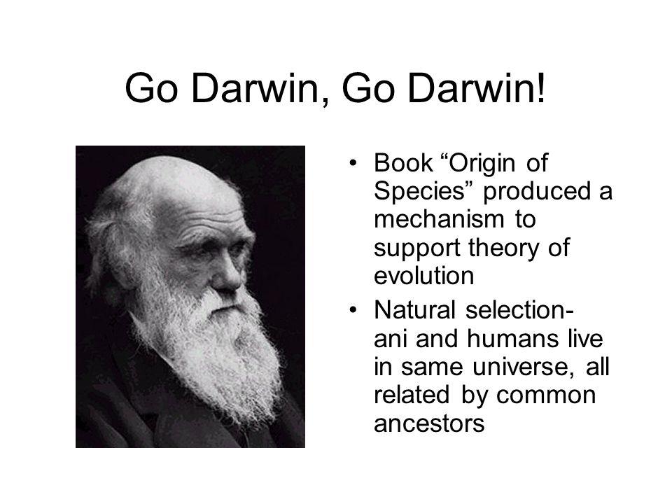 Go Darwin, Go Darwin.