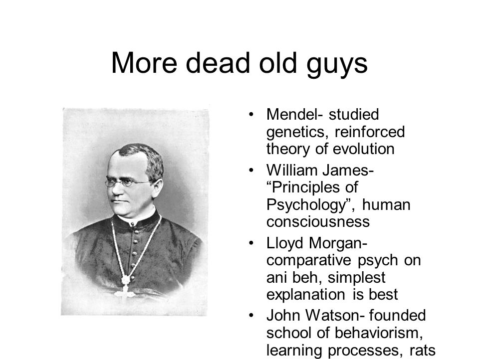 More dead old guys Mendel- studied genetics, reinforced theory of evolution William James- Principles of Psychology , human consciousness Lloyd Morgan- comparative psych on ani beh, simplest explanation is best John Watson- founded school of behaviorism, learning processes, rats