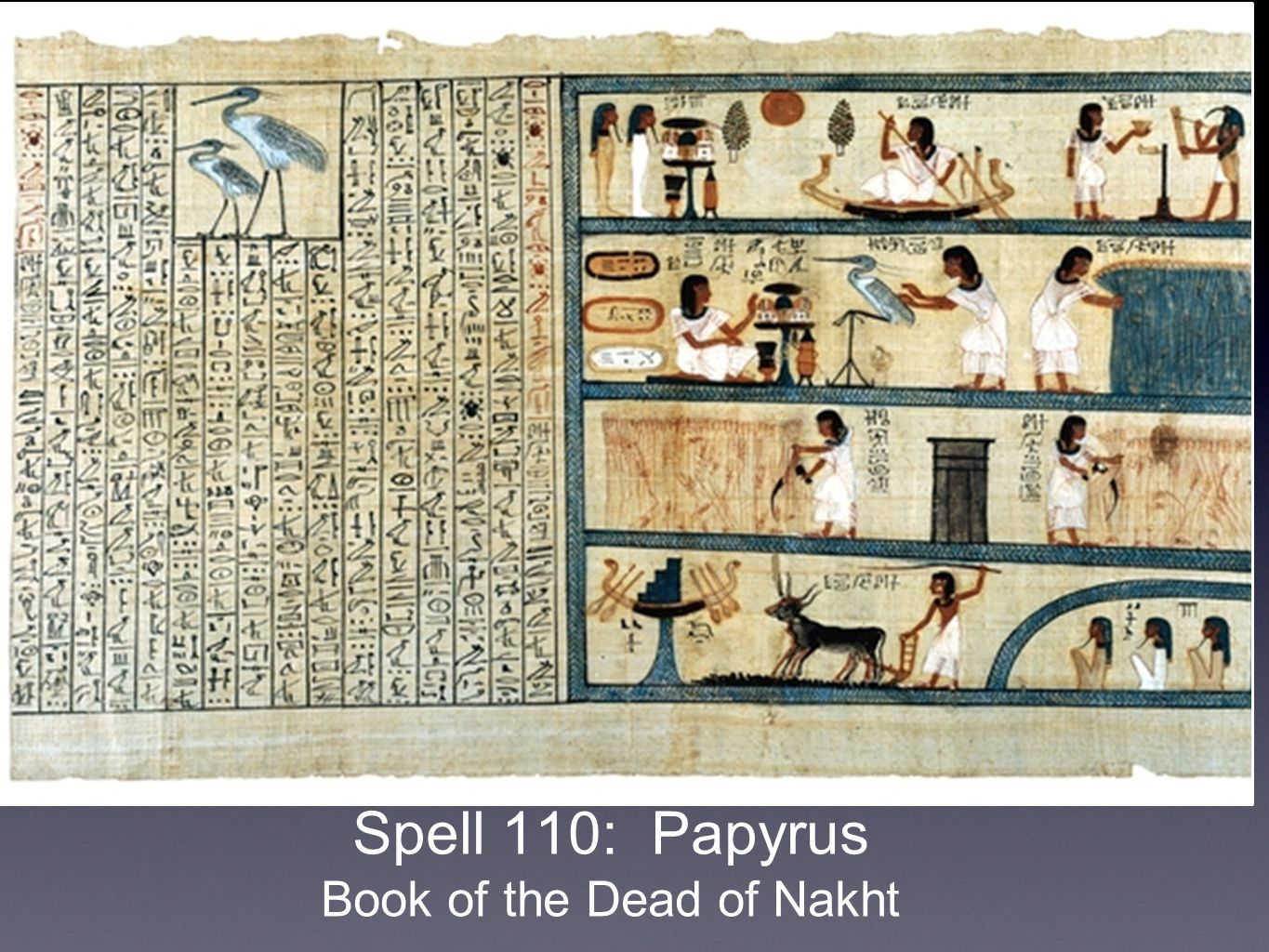Spell 110: Papyrus Book of the Dead of Nakht