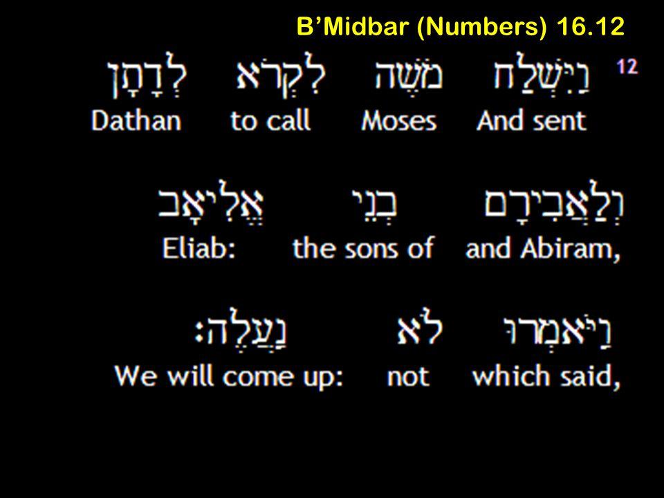 B'Midbar (Numbers) 16.12